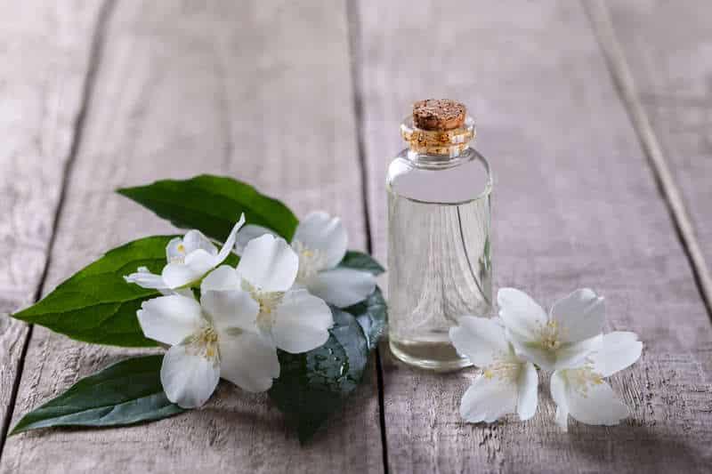 huile essentielle jasmin
